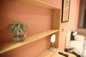 標準雙人房_室內空間_蕨類植物擺設